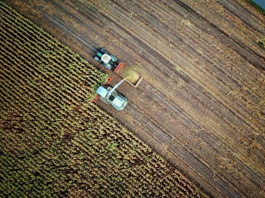 El cobre en la agricultura
